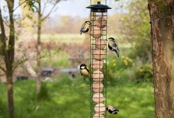 Vogelhuisjes & Vogelvoer