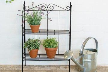 Plantenrekjes en plantentafels