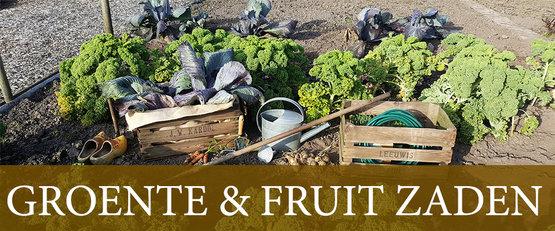 Zaden kopen Groente Fruit