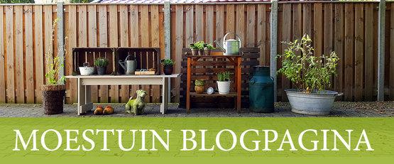 Blogpagina Moestuinland