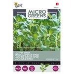 Japanse Tatsoi Zaden Kopen, Micro Greens   Moestuinland