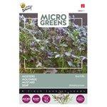Mosterd zaden kopen, micro greens  | Moestuinland