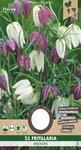 Fritillaria Kievitsbloem bloembollen kopen, Najaar bloembollen | Moestuinland