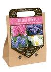 Bloembollen mix, Geurende bloemen (Najaar) | Moestuinland