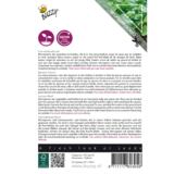 Bechrijving Citroenbasilicum zaaien micro greens
