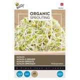 Alfalfa Zaden Kopen, Organic Sprouting (Bio) | Moestuinland.nl