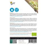Daikonkers zaden kopen en zaaien | Moestuinland