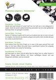 Yin-Yang bonen zaden kopen zaaien, beschrijving   Moestuinland