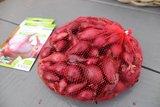 Plantuien kopen, Rode Baron (500 gram)   Moestuinland