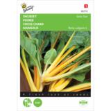 Gele snijbiet zaden kopen, Gele Stier | Moestuinland