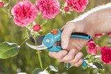 Gardena snoeischaar kopen, Moestuinland snoeien