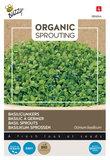 zaden kopen voor basilicumkers - moestuinland