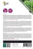 Micro Greens zaden kopen beschrijving Peashoots