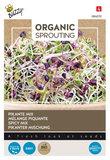 Pikante Mix Zaden Kopen, Organic Sprouting keimgroente  Moestuinland