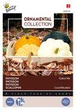 Patisson zaden kopen, Colour Mix (Sierpompoen pompoenen) | Moestuinland
