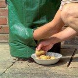 Groeizak sfeerfoto oogsten aardappels kweekzak   Moestuinland