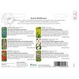 Beschrijving hoe te zaaien RHS bloemen wildbloemen mengsel   Moestuinland
