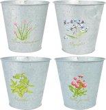Productafbeeding Botanicae 3 pot tray oud zink, Potten met print | Moestuinland