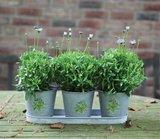 Botanicae 3 pot tray oud zink, Potten met print | Moestuinland