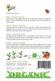 Peper zaden zaaien beschrijving Cayenne BIO | Moestuinland