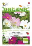 Biologische Cosmos zaden kopen, Cosmea BIO | Moestuinland