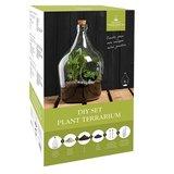 Open plant terrarium kopen 3 liter vaas glas diy set planten | Moestuinland
