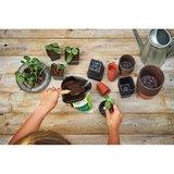 Plastic potjes kopen | Moestuinland