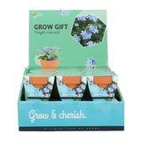 Vergeet-me-niet Grow Gift weggevertje give-away | Moestuinland