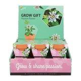 Passiebloem Grow Gift weggevertje give-away | Moestuinland