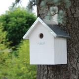 Pimpelnees vogelhuisje bouwen vogelhuis nestkast wit sfeerfoto   Moestuinland