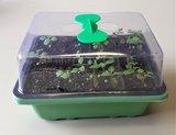 kweekkasje van plastic voor het zaaien van al je zaden bij moestuinland