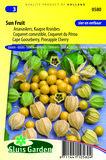 Ananaskers Zaden Kopen, moestuinland