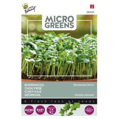 Boerenkool Zaden, Micro Greens (Westlandse)