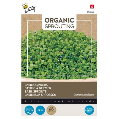 Basilicumkers Zaden, Organic Sprouting | BIO