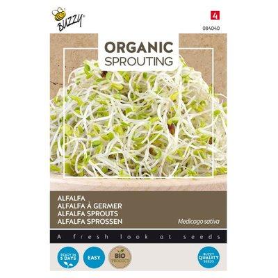 Alfalfa Zaden, Organic Sprouting | BIO