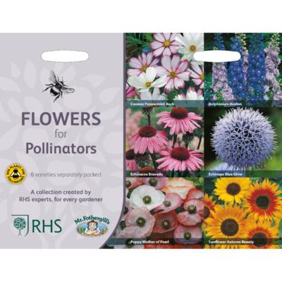 Bijvriendelijke bloemen, Collectie van 6