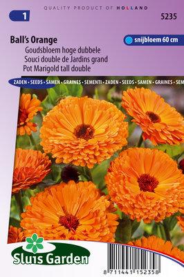 Goudsbloem zaden, Ball's Orange (Calendula officinalis)