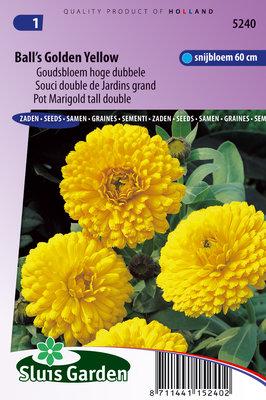 Goudsbloem zaden, Ball's Golden Yellow (Calendula officinalis)