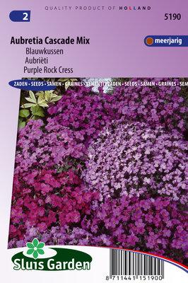 Blauwkussen zaden, Aubretia hybride mix
