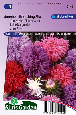 Aster zaden, American Branching Mix
