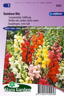 Leeuwenbekje zaden, Rainbow Mix (Antirrhinum nanum)