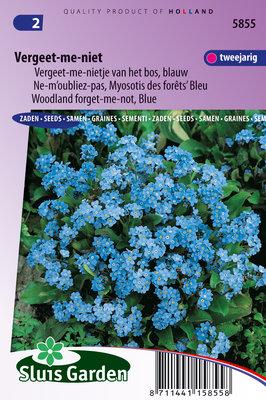 Vergeet-me-nietje zaden, Blauw (Myosotis sylvatica)