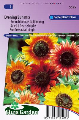 Zonnebloem Zaden, Avondzon Mix (Helianthus annuus)