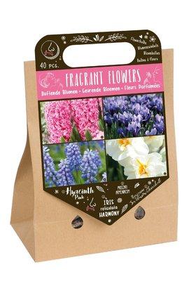 Bloembollen mix, Geurende bloemen (Najaar)