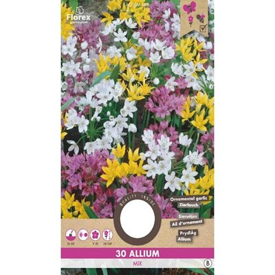 Allium Bloembollen, Sieruitjes gemengd