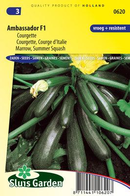Courgette zaden, Ambassador F1