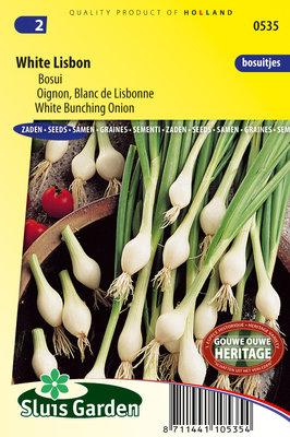 Ui Zaden, Lente- of Bosui White Lisbon (Uien)