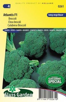 Broccoli zaden kopen, Atlantis F1