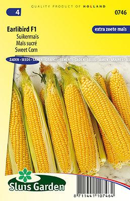 Maïs zaden, Earlibird F1 (Suikermaïs)