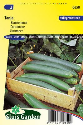 Komkommer zaden, Tanja